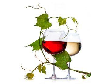 Wein Bei Erkältung